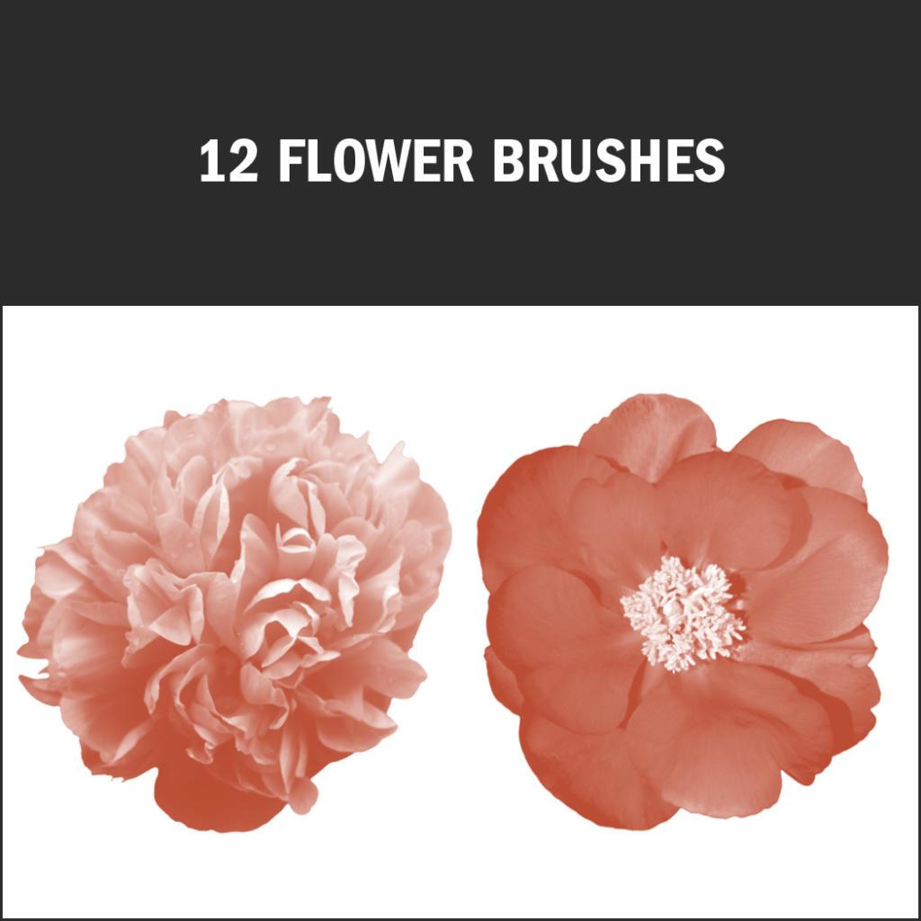 pinceles de Photoshop con detalles de flores