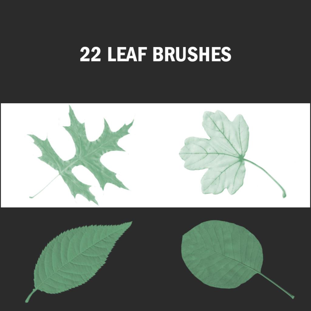 Photoshop: diseños otoñales con pinceles de hojas